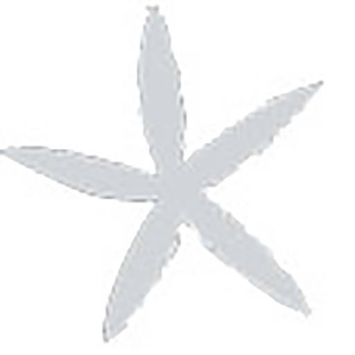 cropped-star-1.jpg