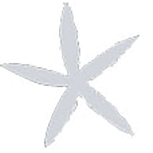 cropped-star.jpg